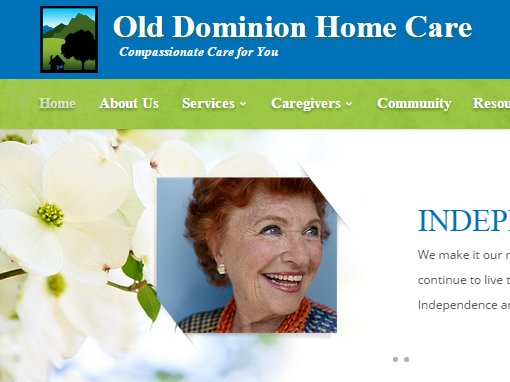 New Website For A Northern Virginia Home Care Company
