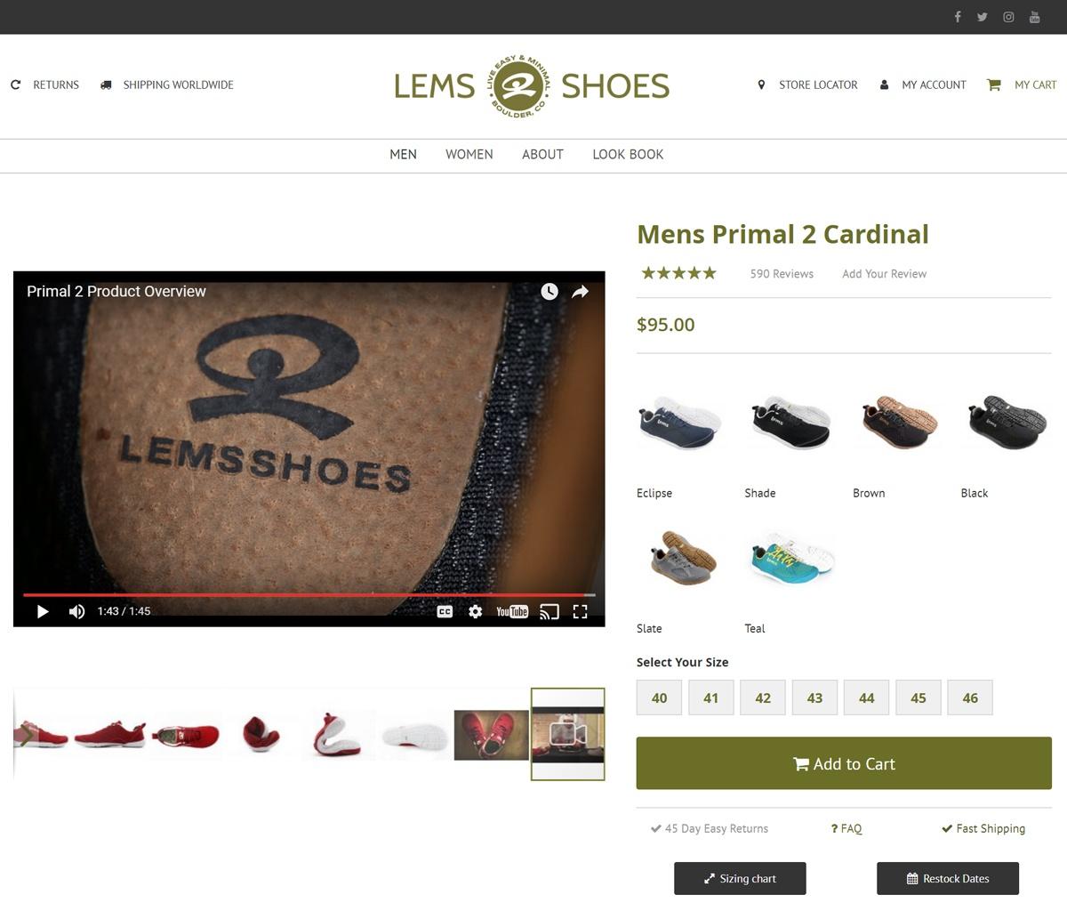 lems-video